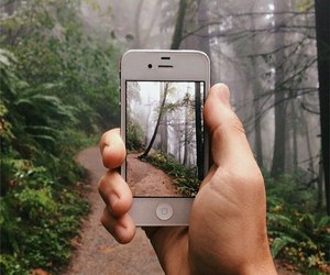 iphone, nature, and hipster image
