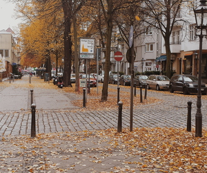 autumn, berlin, and trees image