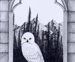 Image by Rümeysa