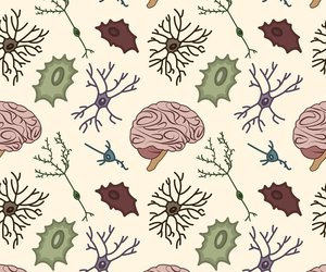 brain, patterns, and science image