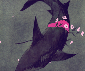 shark, art, and flower image
