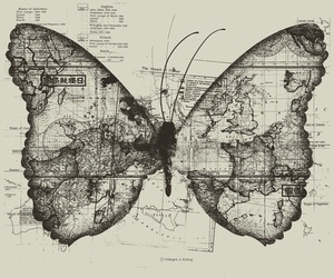 butterfly, map, and travel image