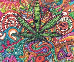 weed, marijuana, and colors image