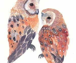 art, owls, and watercolor image