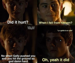 the maze runner, dylan o'brien, and newtmas image