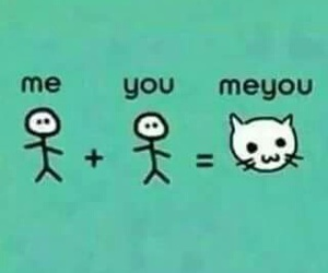 cat, me, and you image