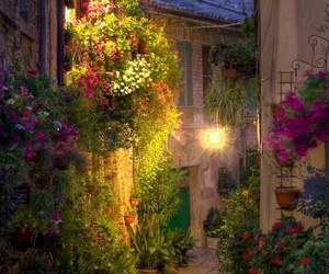 italy, flowers, and italia image