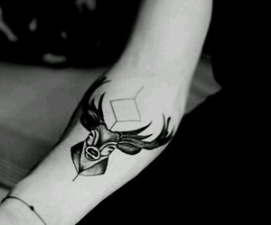 arm, deer, and tattoo image