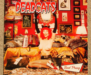 cats, leopard, and red hair image