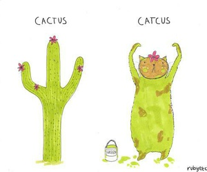 beauty, cactus, and cats image
