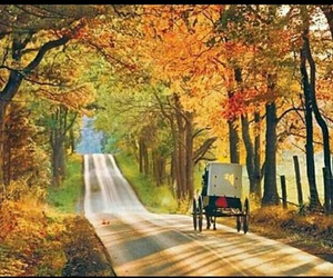 autumn and country image
