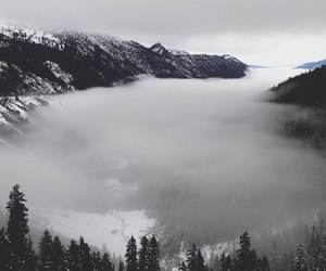 black, fog, and clouds image