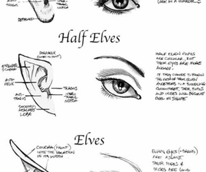 drawing, elf, and eyes image