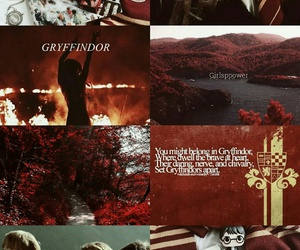 gryffindor, harrypotter, and ronweasley image
