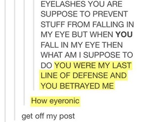tumblr, funny, and post image