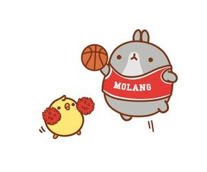Basketball, korean, and rabbit image