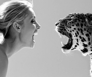 black and white, leopard, and tiger image
