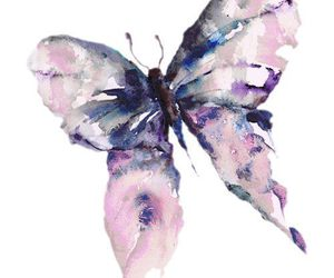 butterfly, overlay, and watercolor image