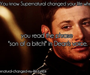 supernatural, dean winchester, and son of a bitch image