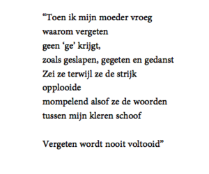 nederlands, quote, and words image