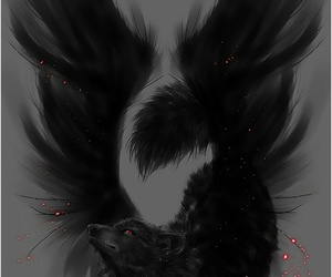 wolf, black, and wings image