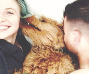hayley williams, dog, and cute image