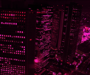 pink, city, and light image