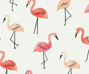 wallpaper, pink, and flamingo image