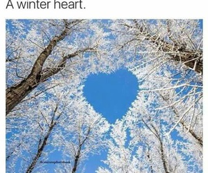 heart and winter image