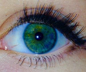 blue, eye, and eyelashes image