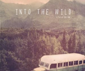 into the wild, wild, and movie image