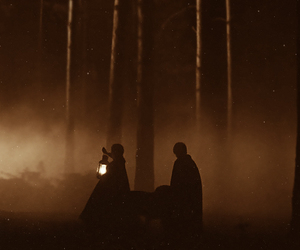 draco malfoy, fog, and forest image