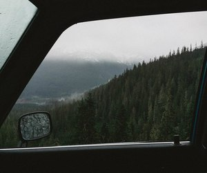 car, forest, and travel image