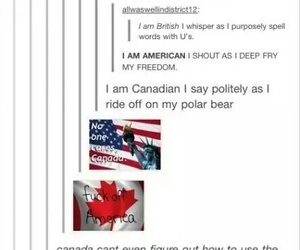 canada, funny, and america image