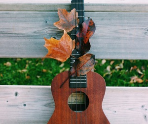 fall, instrument, and music image