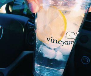 tumbler, vineyard, and lemon+water image