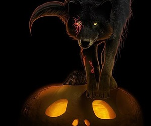 Halloween, pumpkin, and wolves image