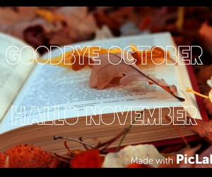 book, months, and november image