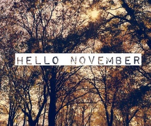 hello november, autumn, and fall image