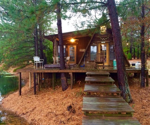 forest house, tiny house, and wooden house image