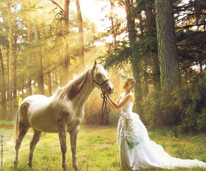 horse, forest, and dress image