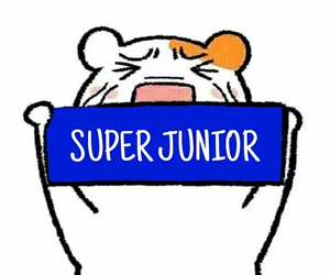 super junior, elf, and shindong image