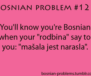 bosnian problem, problems, and bosna image