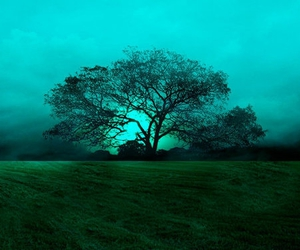 green and tree image