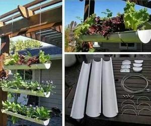 garden and diy image