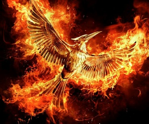 mockingjay, the hunger games, and part 2 image