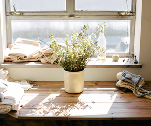 flowers, window, and indie image
