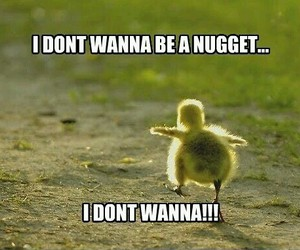 nuggets, funny, and Chicken image