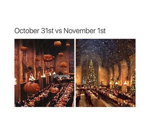 fall, funny, and winter image