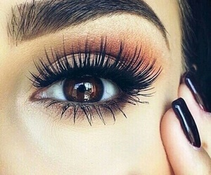 beauty, brown eyes, and lashes image